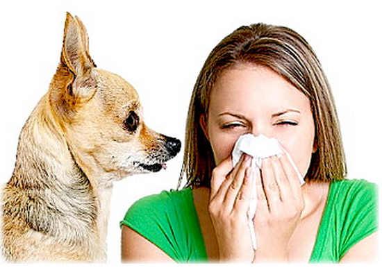 аллергия без причины