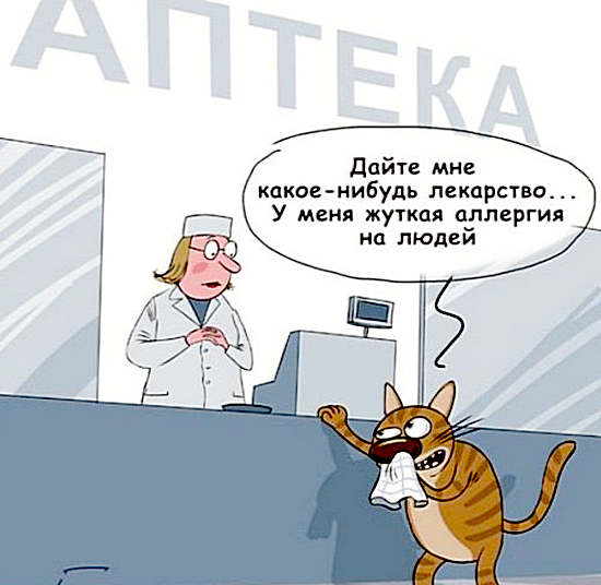 анекдоты про аллергию