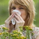 Аллергия на пыльцу — причины, симптомы, лечение, диагностика