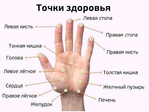 точки на руке, массаж которых полезен
