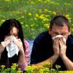 Посвящение сайта allergozona.ru