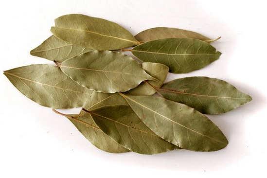 лавровый лист при лечении аллергии