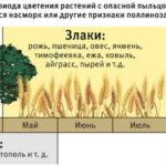 Аллергия на цветение растений или поллиноз — симптомы, лечение сезонной аллергии
