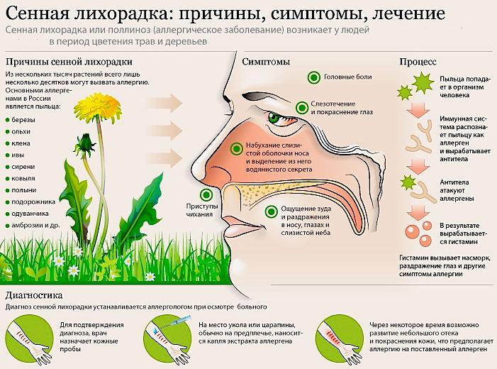 причины аллергии на цветение