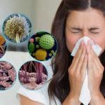 Бытовые круглогодичные аллергены дома