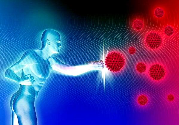 как укрепить иммунитет аллергика