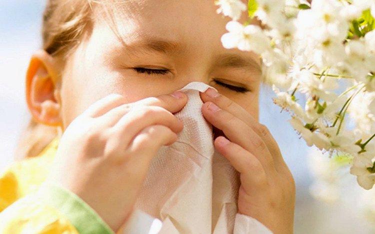 когда нужен детский аллерголог