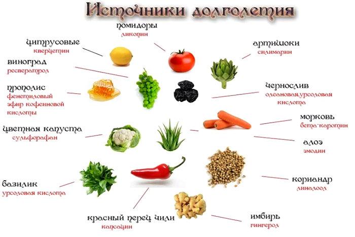 продукты для долголетия